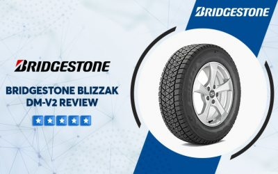 Bridgestone Blizzak Dm-v2 Reviews